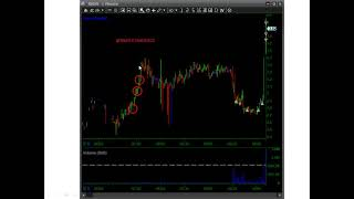 Dip and Rip LONG TRADING STRATEGY w/ Harry Hoss