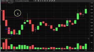 EARS // FFHL // BLNK // FLKS Trade Recap!! – Nico (@Inefficientmrkt)