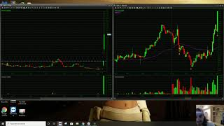 How To Trade A BLACK SWAN Stock | SES Short Squeeze Trade Recap