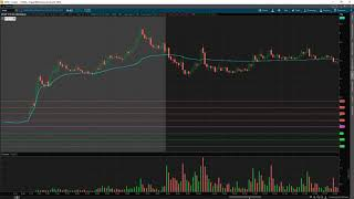How To Trade EASY TO BORROW Stocks w/ TomDiesel