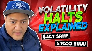 How To Trade VOLATILITY HALTS   What To Invest Your Stimulus Money On   Volatility Halts EXPLAINED*