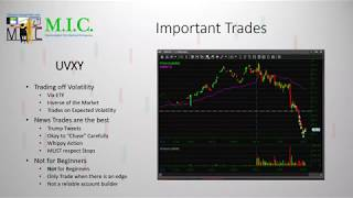 Large Cap VS. Small Cap | Market Sentiment Webinar | Ep. 2