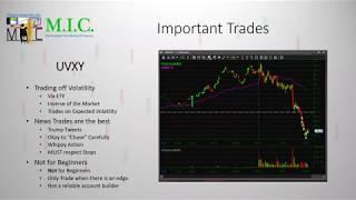 Large Cap VS. Small Cap | Market Sentiment Webinar | Ep. 2