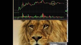 SOLO UUU Trader Recap – Nico 10/29/18