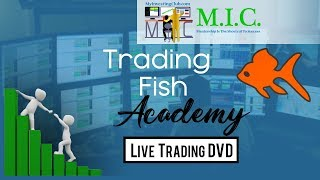 First BAOunce Long | Top Ticking | Stopping Out | Trading Fish Academy